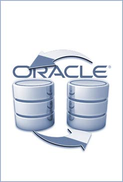 datenbankloesung-oracle
